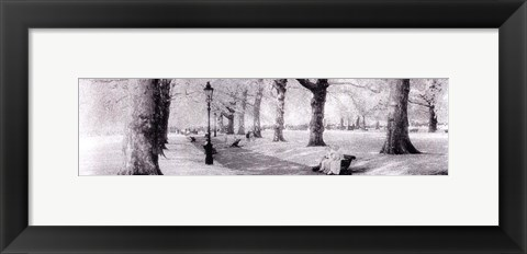 Framed Green Park London Print