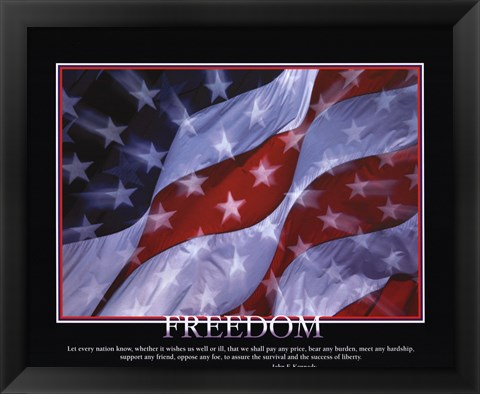 Framed Patriotic-Freedom Print
