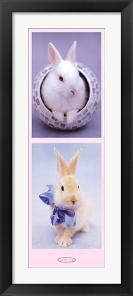 Framed Bunnies Print