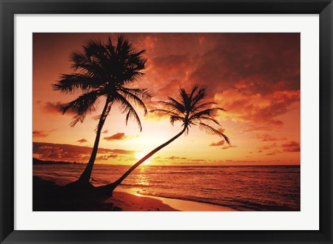 Framed Tropical Sunset Print