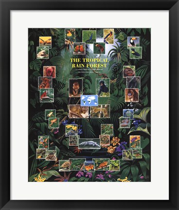 Framed Tropical Rain Forest movie poster Print