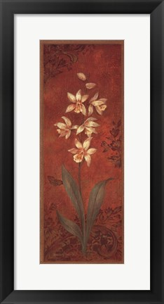 Framed Cymbidium Print