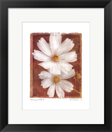 Framed Cosmos on Red II Print