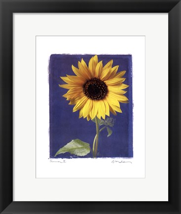 Framed Summer II Print