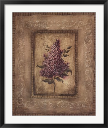 Framed Grand Savin Lilac Print