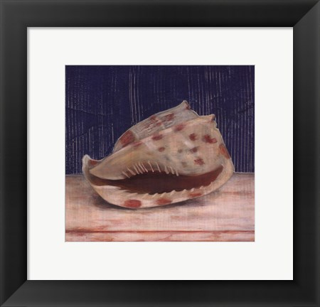 Framed Brown Spotted Shell Print