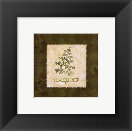 Framed Lace Fern Print