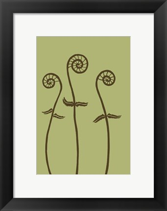 Framed Dichromatic Fiddleheads I Print