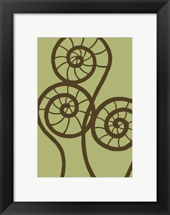 Framed Dichromatic Fiddleheads II Print