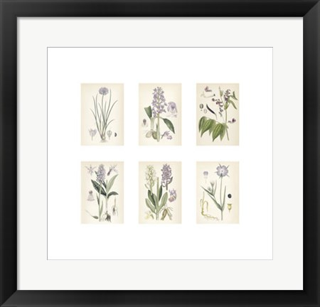 Framed Purple Botanicals Print