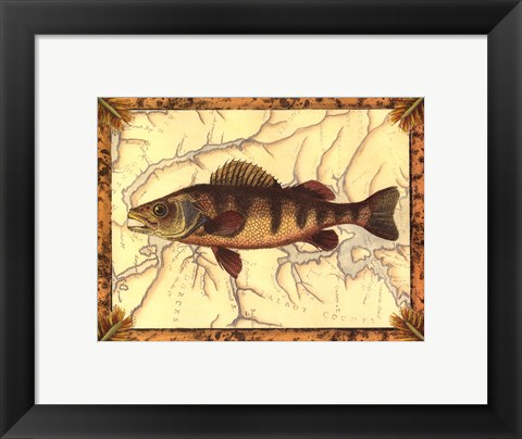 Framed Yellow Perch on Map Print