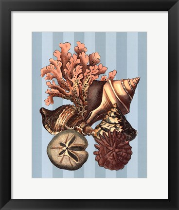 Framed Shell and Coral on Aqua I Print