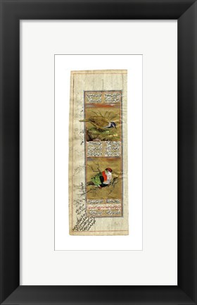 Framed Bird Pair from India II Print