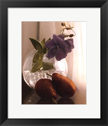 Framed Fall Elegance II Print