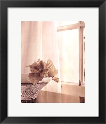 Framed Window Light I Print