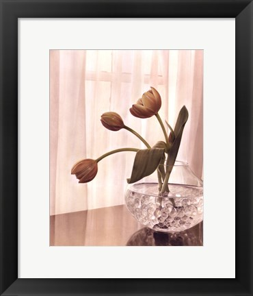 Framed Window Light II Print