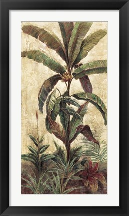 Framed Exotic Palms II Print
