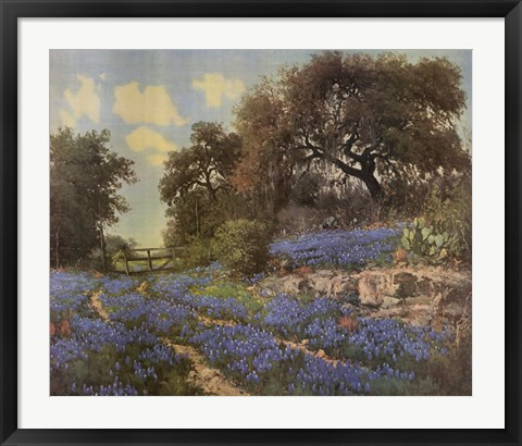 Framed Blue Bonnet Trail Print