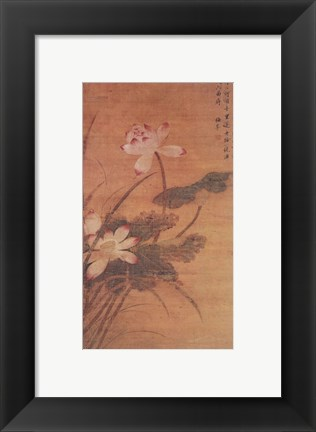 Framed Lotus Flowers Print