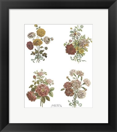 Framed Florals (Set of Four) Print