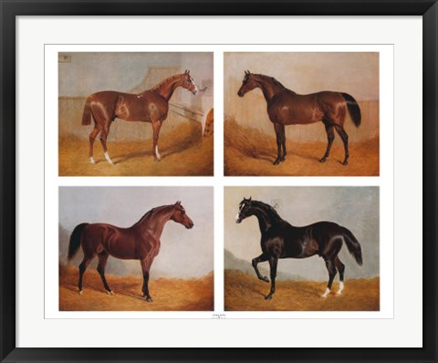 Framed Stable Mates (Set of Four) Print