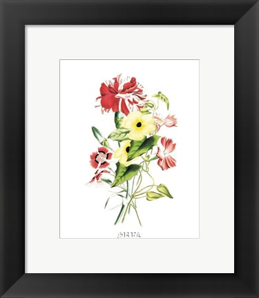Framed Flowers (Untitled) - Bouquet Print