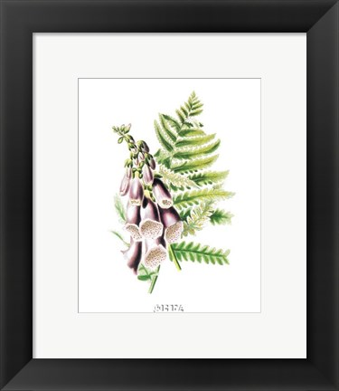 Framed Flowers (Untitled) - Purple Bell Flowers Print
