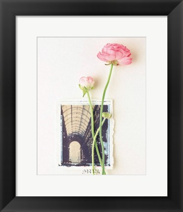 Framed Peony, Euro-Floral Print