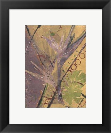 Framed Rainforest Suite II Print