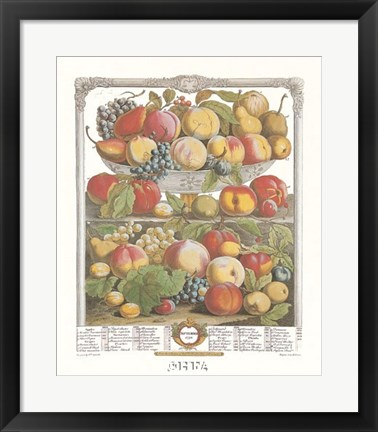 Framed September/Twelve Months of Fruits, 1732 Print