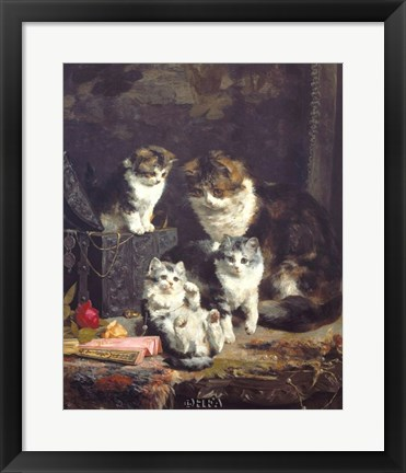 Framed Kittens Print