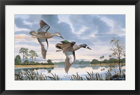 Framed Blue Wings in Flight Print
