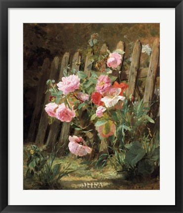 Framed Pink Roses by a Garden Fence Print