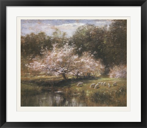 Framed Sheep Grazing Under Apple Blossoms Print