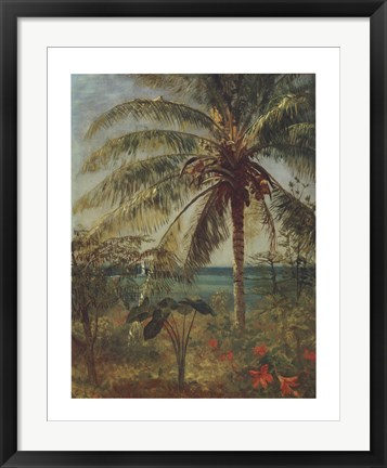 Framed Palm Tree, Nassau Print