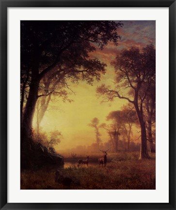 Framed Light in the Forest Print