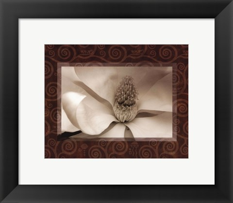 Framed Magnolia Window I Print