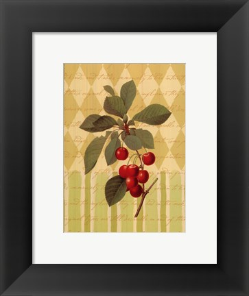 Framed Botanical Cherries Print