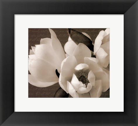 Framed Winter Magnolia I Print