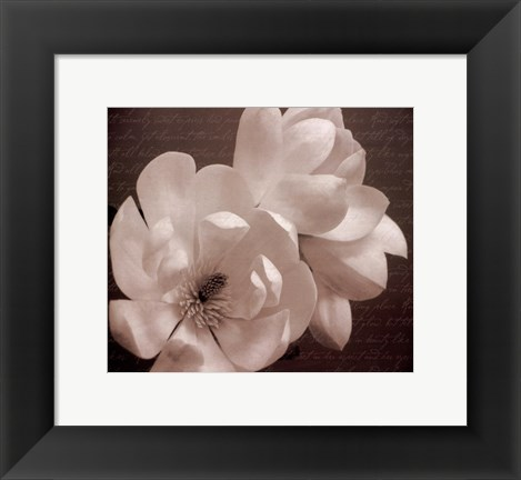 Framed Winter Magnolia II Print