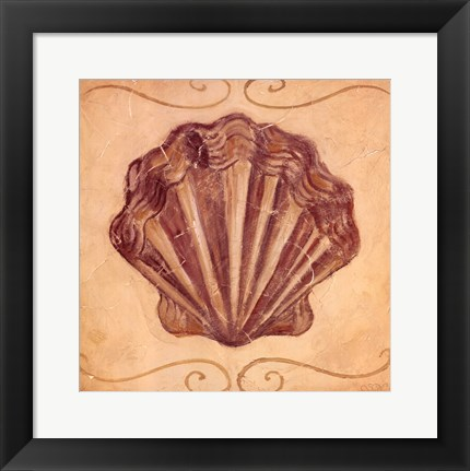 Framed Scallop Print