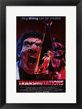 Framed Transmutations Print