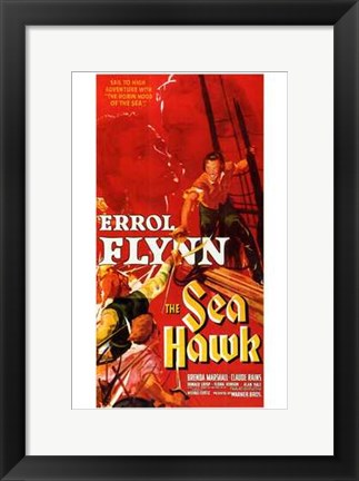 Framed Sea Hawk Print