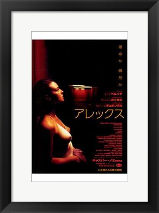 Framed Irreversible Print