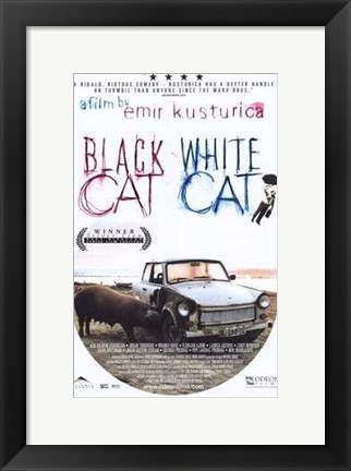 Framed Black Cat  White Cat Print