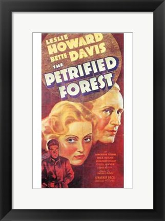 Framed Petrified Forest Print