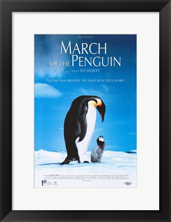 Framed March of the Penguins Blue Print