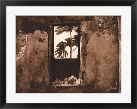 Framed Palm View I Print