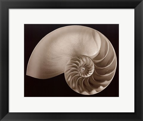 Framed Ocean Keepsake II Print