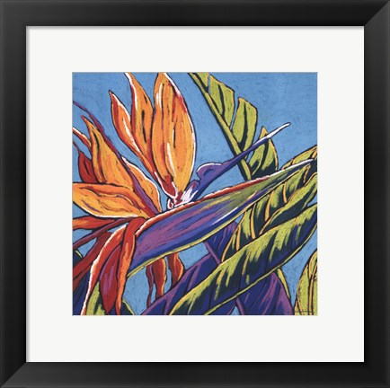 Framed Birds of Paradise - Turquoise Print